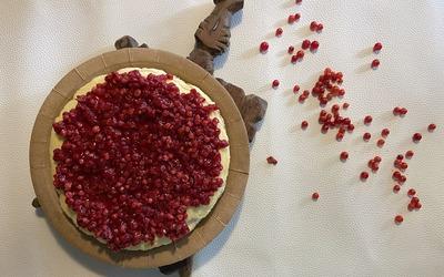 Cheesecake New Yorkais Healthy