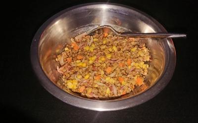 Salade de lentilles sauce moutarde