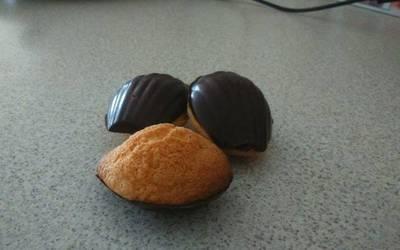 Madeleines Coques en chocolat