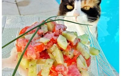 Tartare de Crudité, Concombres et Tomates
