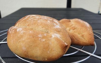 Petits pains maison