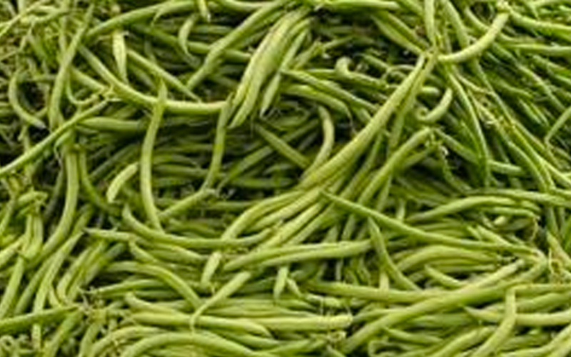 Haricots verts au micro-onde